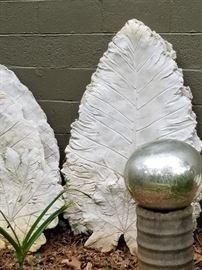 Close up of the Elephant Ears.. these are great on a patio, garden wall or to dress up the side of a garage!