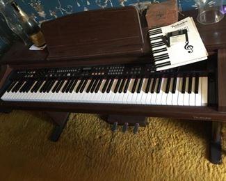 Technics Electronic Piano.