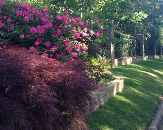 As you walk toward the gate from the street OR from the Sylvania Baptist Church parking lot, view and enjoy the beautiful grounds.