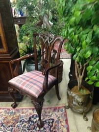 One of two host chairs for the dining table; brass planter and ficus tree