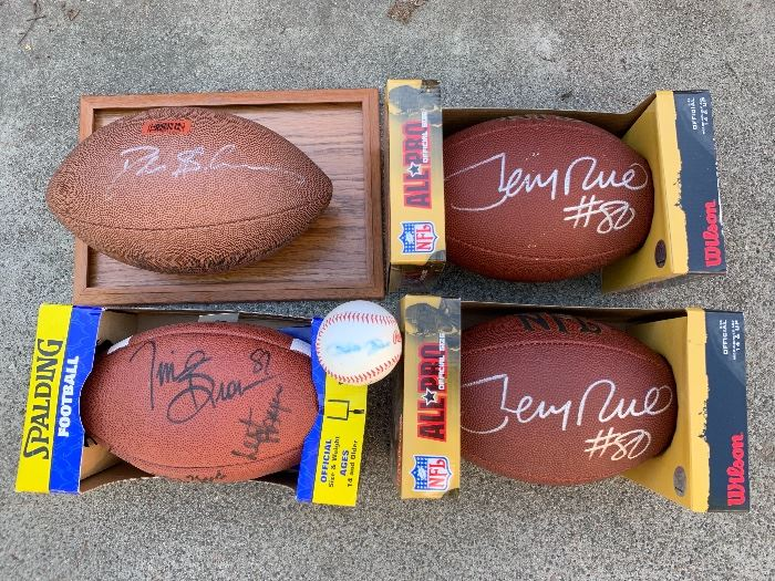 Authentic signed NFL footballs & Pete Rose signed baseball (no certs).