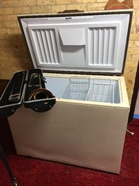 Trumpet available - Freezer sold