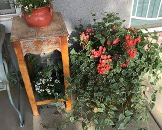 End Table and plants