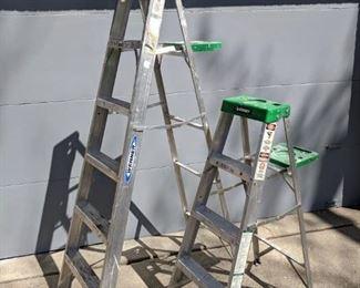 Ladders, fully grown.