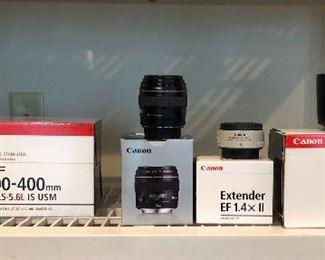 Canon EF 100-400mm Image Stabilizer Ultrasonic lens, Canon EF 85mm lens,  Canon EF1.4x11 lens,  Canon EF 135mm Ultrasonic lens