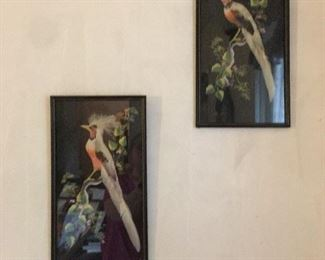 Vintage Bird prints with real feathers framed