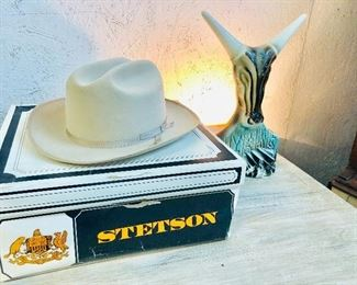 Like new Stetson Hat in box