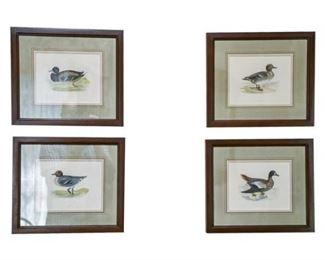 102. Set of Four 4 Duck Prints