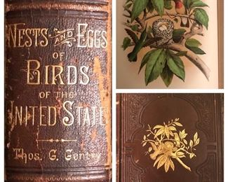 Library of natural history books. This fine example, an antique leather bound, Gentry's 'Nests and Eggs of Birds of the United States'.