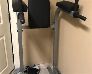 Dip/leg raise machine