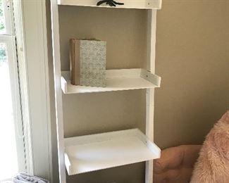 Step ladder shelves