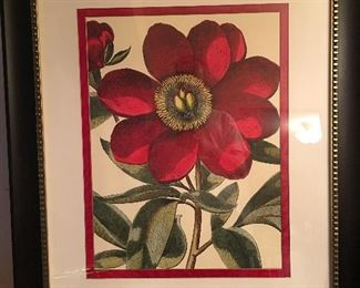 Stunning large vibrant black framed flower print.