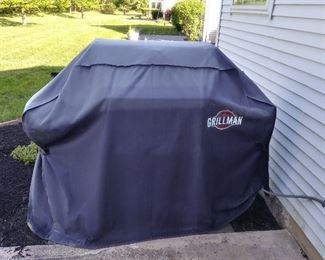 Weber Genesis grill. Direct to gas