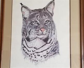 """Bobcat"" by Jacquie Marie Vaux with COA"