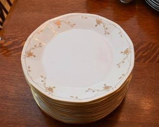Mikasa Dinner Plates