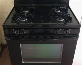 Amana - Stove  - Like New Condition - Oven Spotless - $175