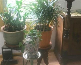 Plants and various plant stands & Accent tables