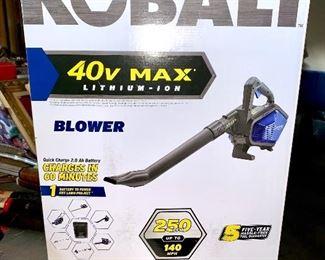Cobalt blower battery powered