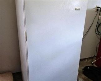 Standing Freezer