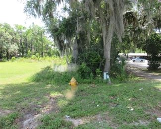 fire hydrant and water meter are here on the Northeast corner of the property