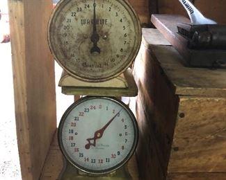 5 Kitchen Scales