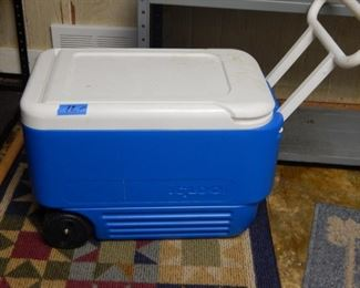 Nice size cooler.