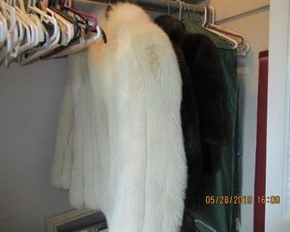 FURS AND MINKS