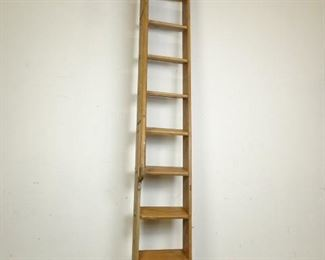 WarehouseLibrary Ladder