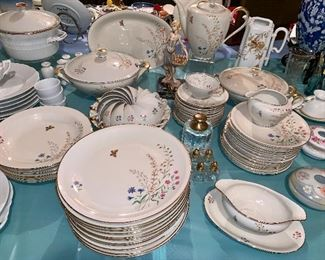 This set of china is very rare- each piece is handmade so you will get the slightest difference in thickness, etc.  Pieces vary due to breakage in shipping Schirnding manufacturer