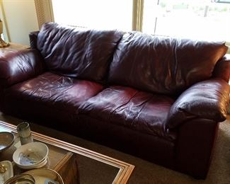 The Sealy leather sofa