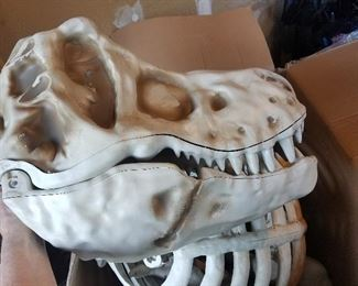 head to a 9 Foot Dinosaur - we have the whole skeleton!!
