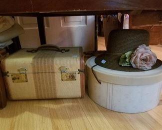 stylish train case and hat box