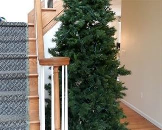 Christmas Trees throughout the home, very large