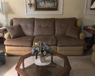 Clean couches and sleeper sofas