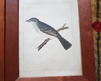 Part of a group of bird prints