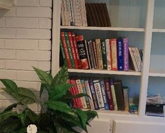 cookbooks, basket, silk plant
