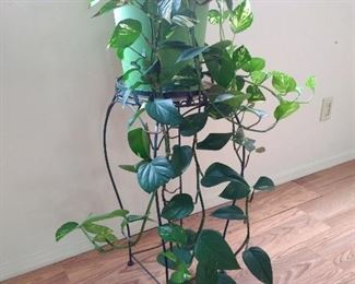 Indoor potted plant & metal plant stand