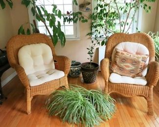 Wicker/woven chairs, plants