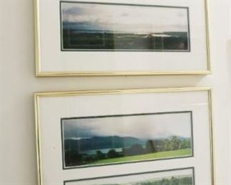 Decorative countryside prints/pictures