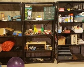 Lots of home chemicals and supplies