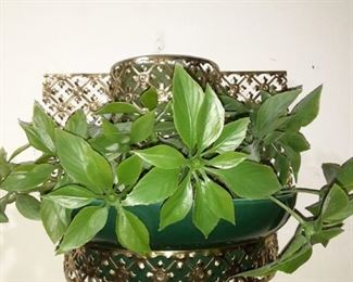 Wall Plant Lamp