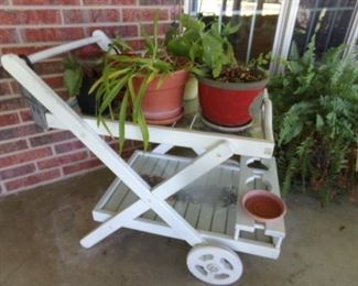 Wood Cart with glass inserts + Plants