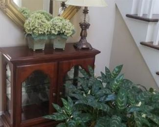 foyer table and mirror and lamp and many plants throughout home