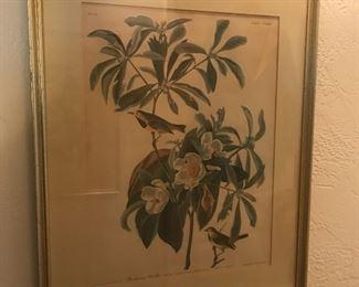 vintage Botanicals/4