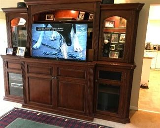Lyft/Lift built-in TV in bookcase cabinet-stereo