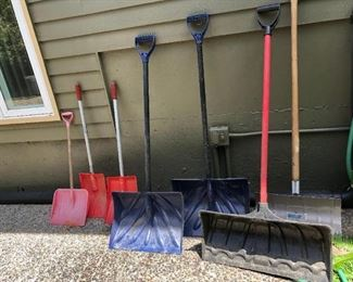 Back Yard:  Gaggle of Shovels