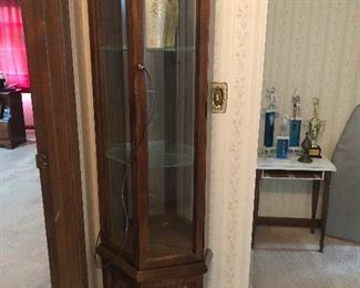 Cabinet for displaying scientific oddities