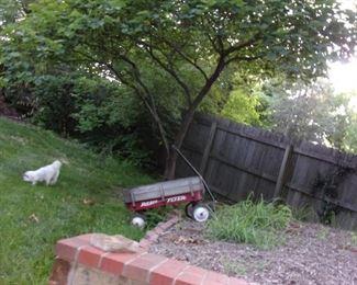 Radio Flyer wagon (doggie not for sale!).