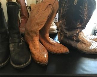 Harley Davidson boots and more cowboy boots