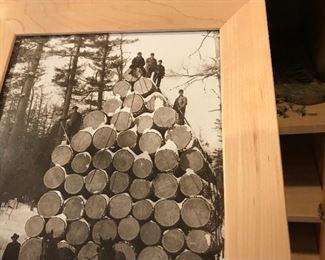 Old Logging  Photo - Northern Michigan